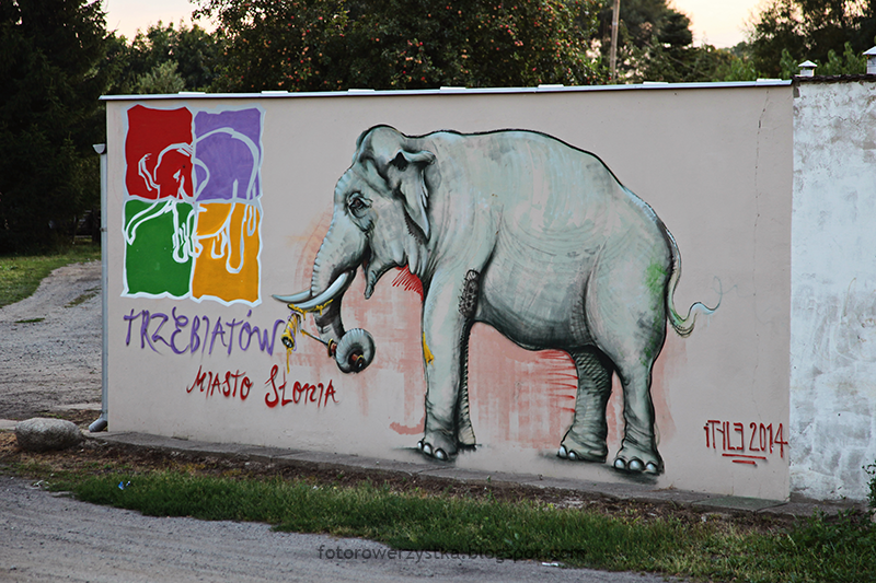 miasto słonia