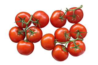tomatoes-tomates