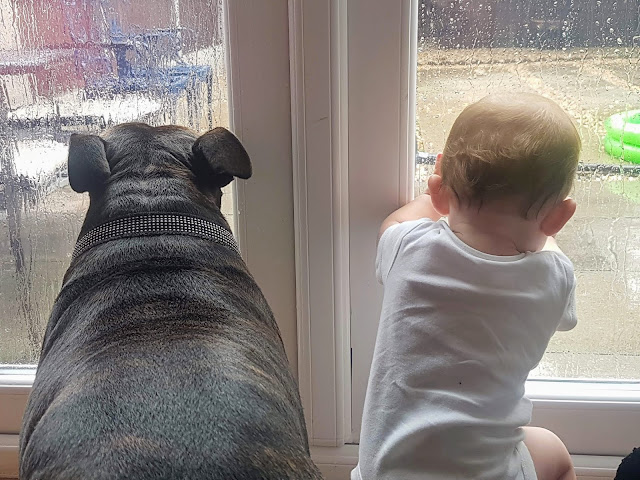 A Girl and Her Dog. Living Arrows. autistic and pregnant autistic mum life sharing pregnancy and parenting experiences from the autism spectrum