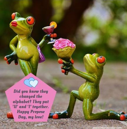 funny Propose Day Quotes