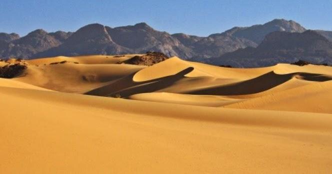 Curiosidades de los desiertos