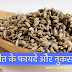 अजवाइन के फायदे -Benefit Of Carom Seeds