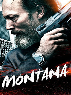 Montana 2014 Dual Audio Hindi 720p BluRay 850MB