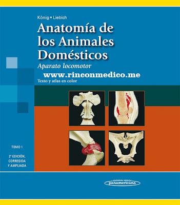 Anatomía Veterinaria Köning | Rincón Médico