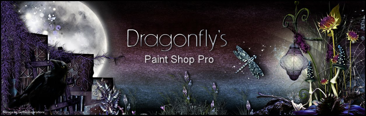 Dragonfly's Paint Shop Pro