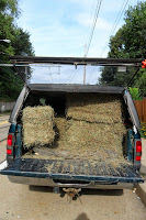 Truck full of bales of hay
