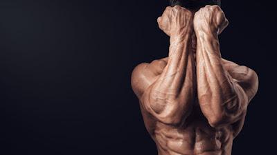 latihan forearm