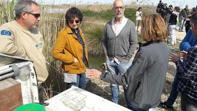 La Generalitat destaca la importancia de la reutilización de aguas residuales para proteger la biodiversidad y el medio ambiente en el Día Mundial del Agua