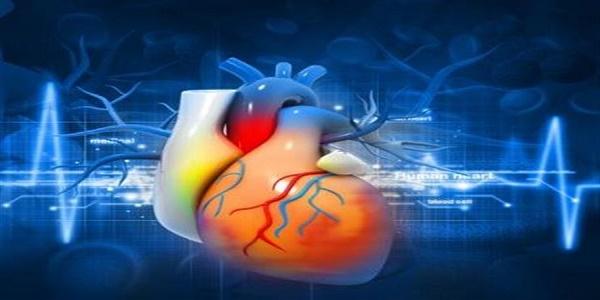 Νέοι προγνωστικοί δείκτες της καρδιαγγειακής νόσου από Έλληνες ειδικούς