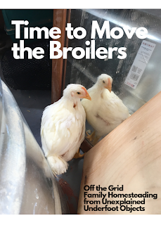 Time to Move the Broilers
