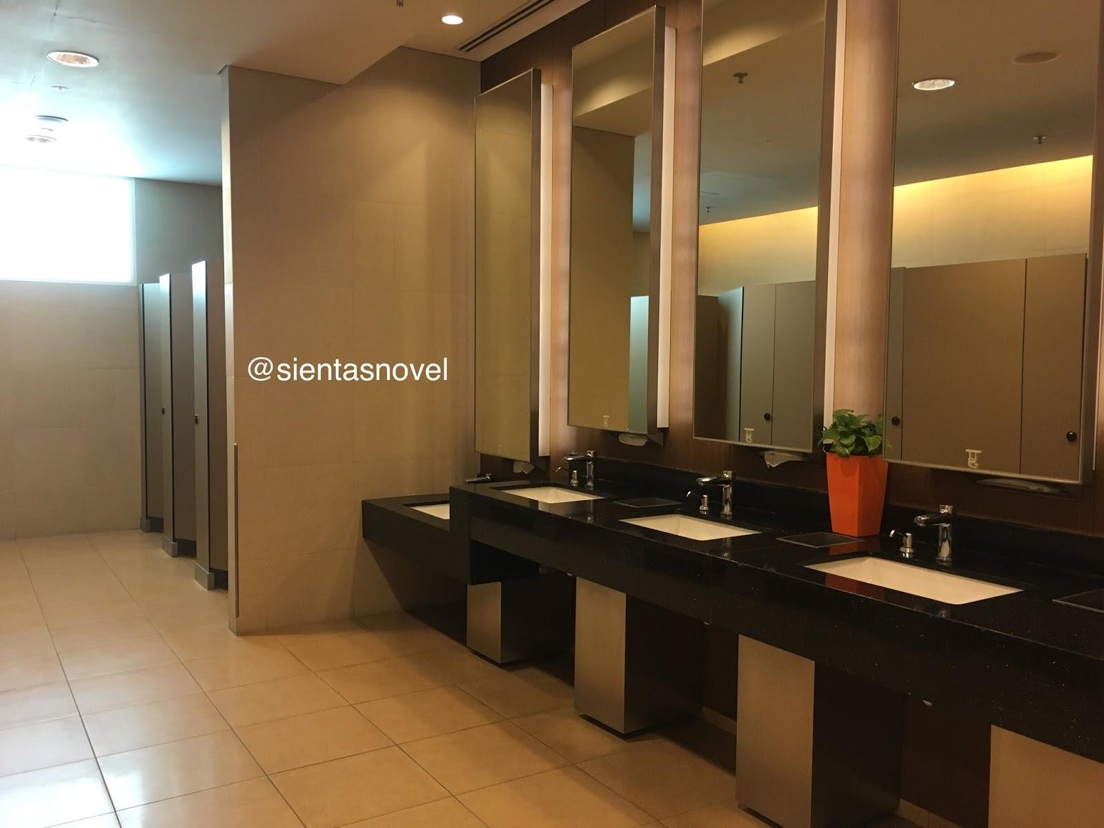 Singapore Toilet Di Changi Airport