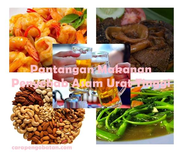 Pantangan Makanan Penyebab Asam Urat Tinggi