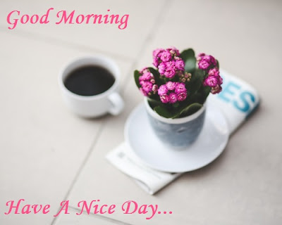 Good Morning Image With Flowers and a cup of coffee