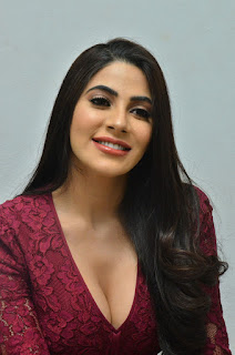 Nikki Tamboli Chikati Gadilo Chithakotudu Movie Success Meet 12