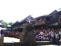 Memukaunya Tradisi Lompat Batu di Nias, Bisa Jadi Warisan Dunia