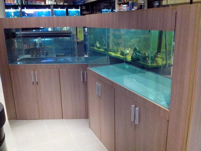 Acuarios Decorpez: Muebles para peceras marinas