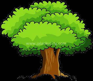 pohon vektor