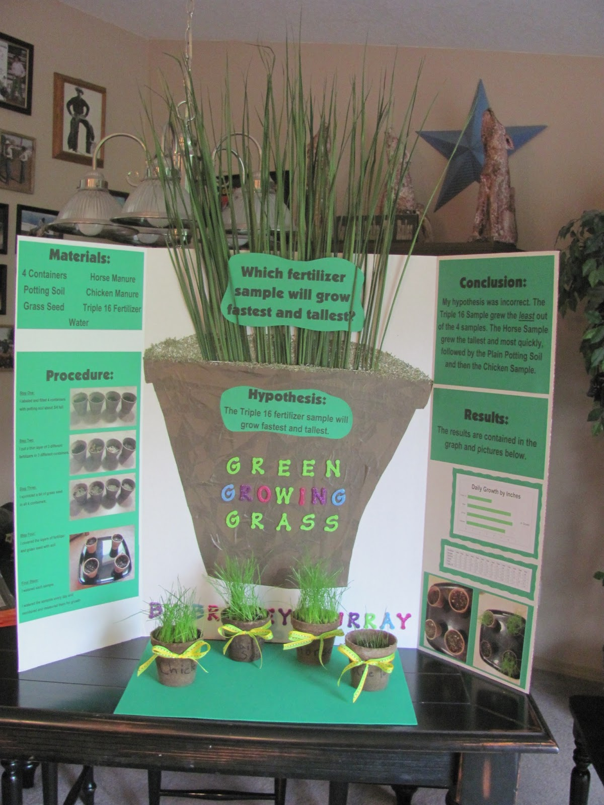 Growing Bean Plants for Science in Grade School: Experiments & Ideas