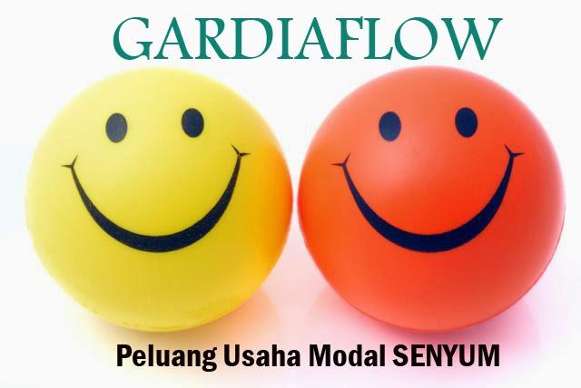 peluang usaha bisnis modal senyum