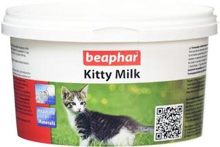 Susu yang Sesuai untuk Anak Kucing Baru Lahir