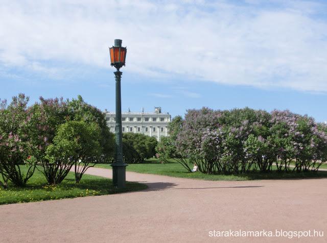 Питер, сирень, Петербург, весна в Питере, достопримечательности Петербурга, стара каламарка, starakalamarka