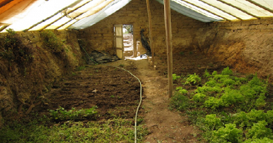 Organic News How To Build An Underground Greenhouse That