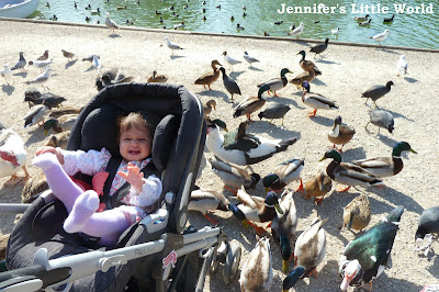 Child in pushchair with ducks