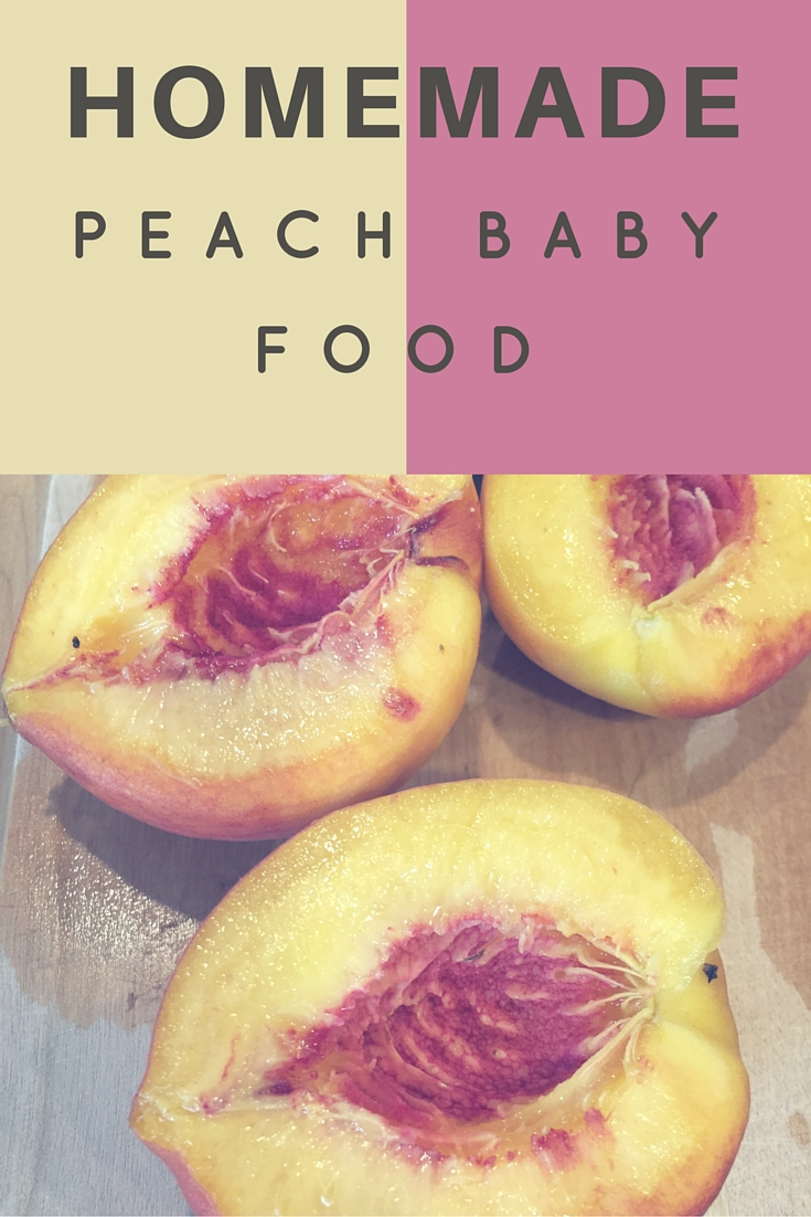 make your own baby food machine