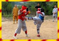 Sanda kung fu style