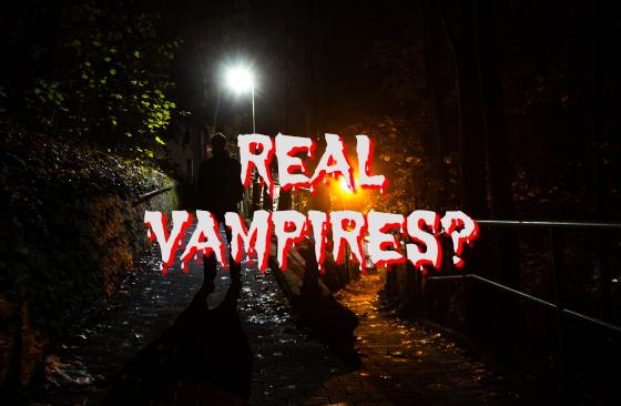 Real Vampires?