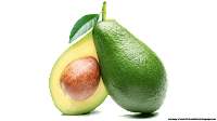avocado graphic pictures