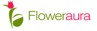 Flower Aura Offer Get flat 25% Off On Gifts Product