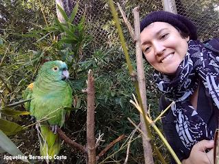 O Zoológico de Gramado possui muitos atrativos para quem o visitar.