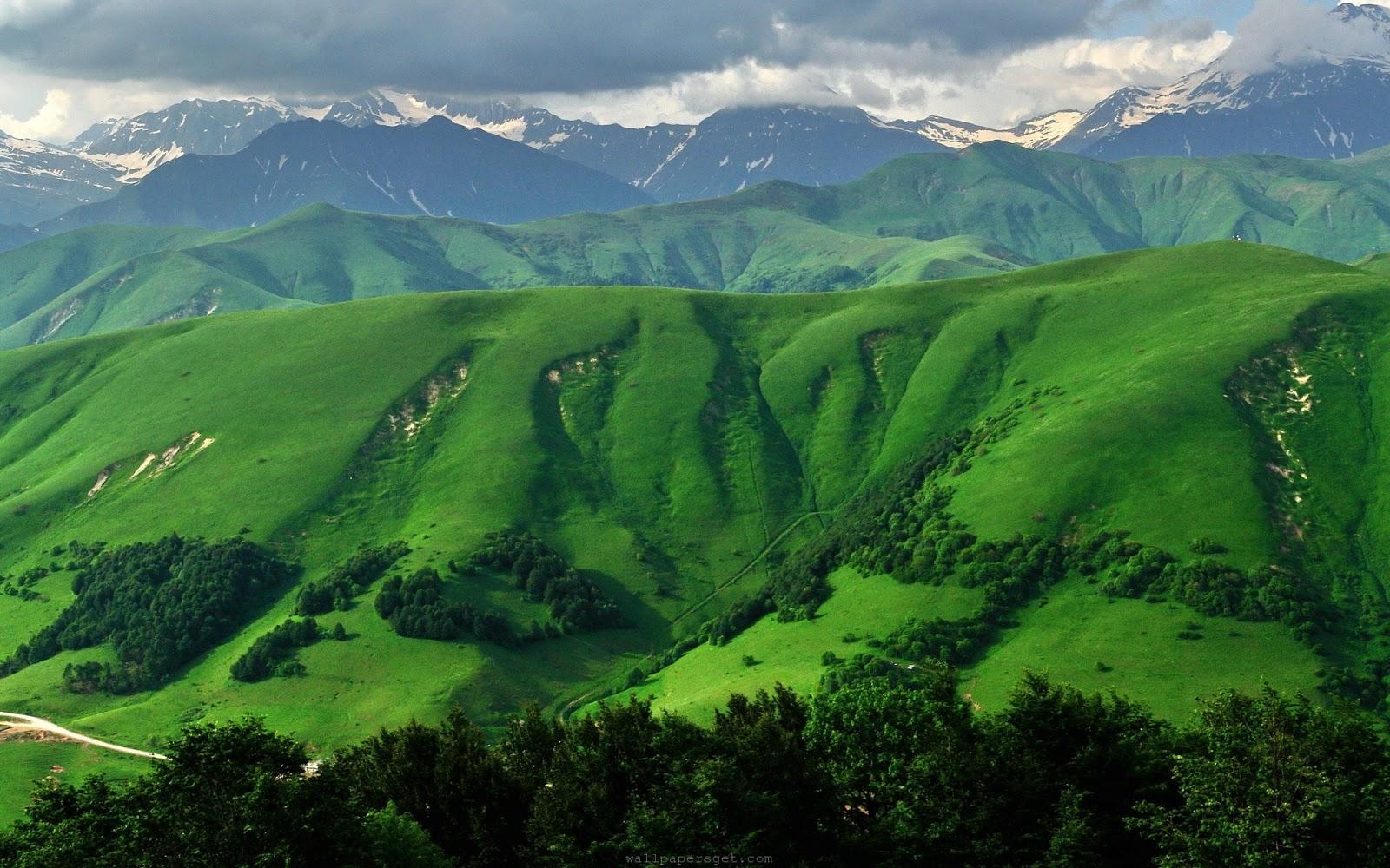 Labels beautiful mountain wallpapers - Green nature wallpaper full hd ...