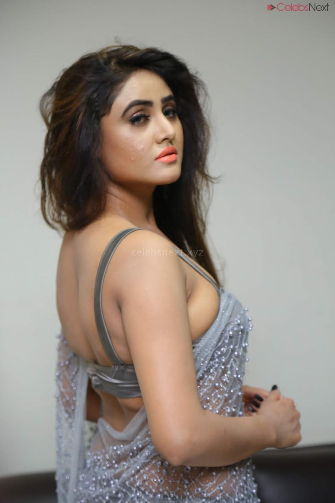 Sony Charishta in Saree and Brastyle choli CEleBsNext.XYZ Exclusive