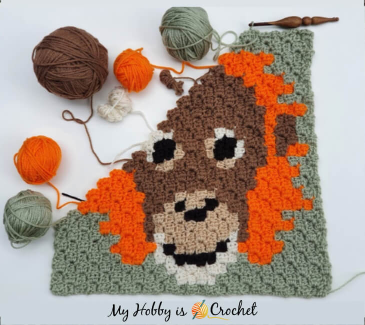 Orang- Utan C2C Square- work in progress