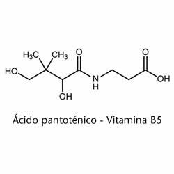 ácido pantoténico o vitamina B5