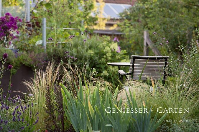 Garten, Blumen, Gräser, Staudenbeet, Blumenbeet, schöne Blumenbeete, Garten mit Gräsern