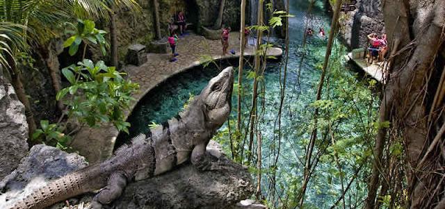 Conheça o maravilhoso parque eco-arqueológico Xcaret em Cancún
