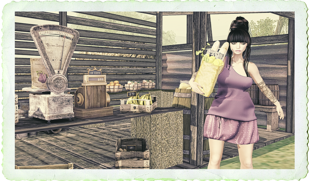 SUNDAY MORNINGS AT THE MARKET (New Flash Group Gift is out !)