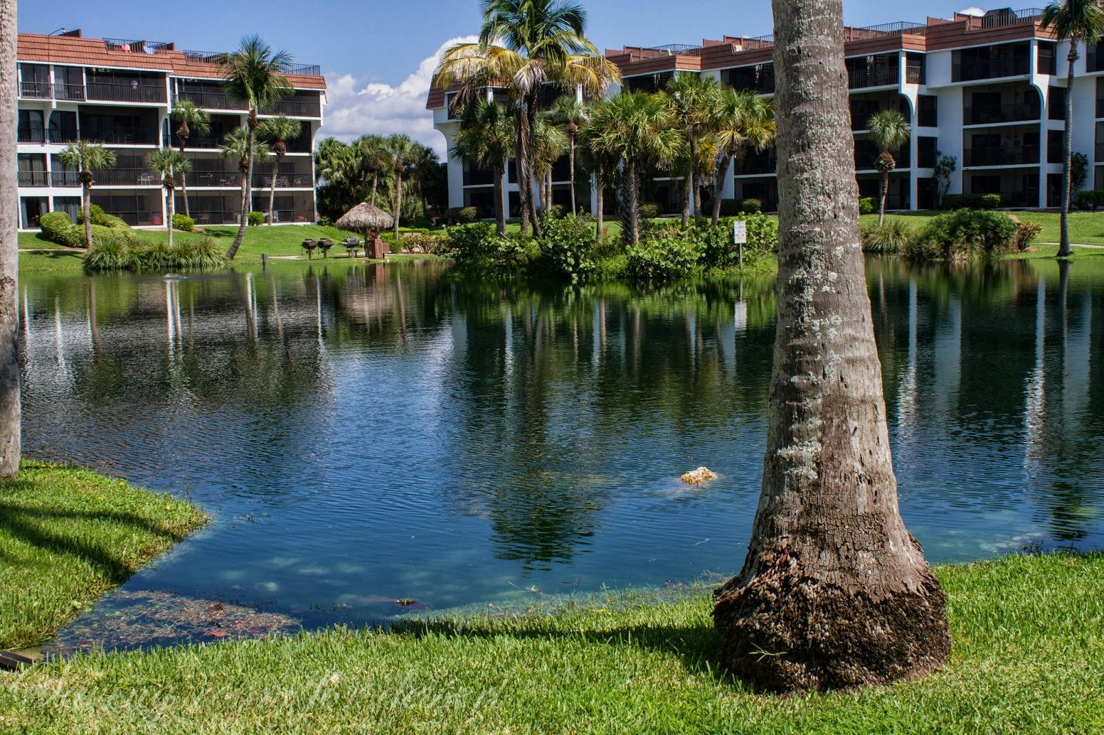 Sanibel Island Florida A Wonderful Vacation Saving