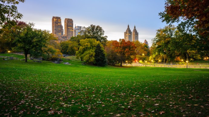 View from Central Park, NY