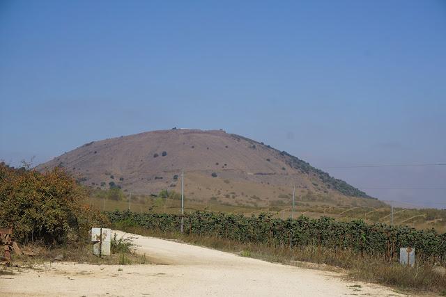 הר אביטל
