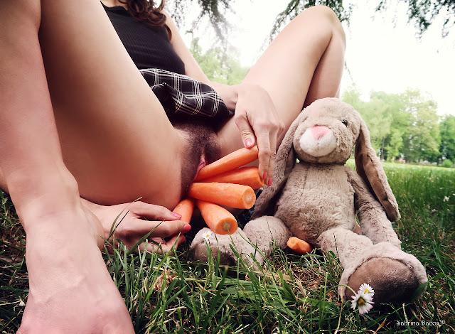 sabrina dacos carottes lapin