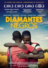 Diamantes negros (2013)