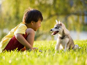 Tips hond bij kinderen
