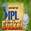 Play IPL Cricket 2013 game