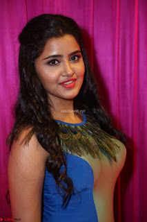 Anupama Parameswaran in lovely shaded gown ~  Exclusive 19.JPG