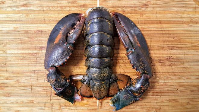 Découper un homard à cru