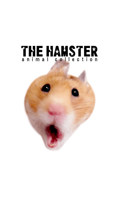 THEHAMSTER